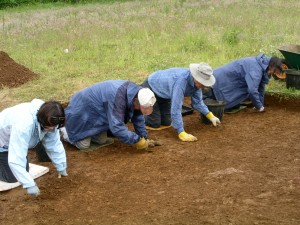 Excavation at the National Herb Centre